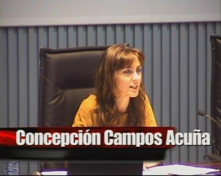 Concepción Campos Acuña, secretaria del Concello de Vigo - Xornada sobre as instrucións de desenvolvemento da Lei 9/2002, de 30 de decembro, de Ordenación Urbanística e do Medio Rural  de Galicia, na redacción